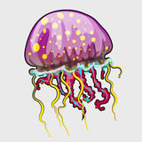 Spotted a pink jellyfish in cartoon style Royalty Free Stock Photo