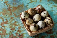 Quail eggs in a box on a blue textured background, top view, selective focus. Spotted quail eggs arranged in rows in a box on a blue textured background, top Stock Photos