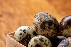 Quail eggs in a box on a rustic wooden background, top view, selective focus. Spotted quail eggs arranged in rows in a box on a rustic wooden background, top Stock Image