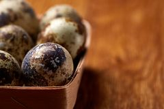 Quail eggs in a box on a rustic wooden background, top view, shallow depth of field. Spotted quail eggs arranged in rows in a box on a rustic wooden background Royalty Free Stock Image