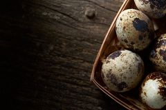 Quail eggs in a box on a vintage wooden background, top view, selective focus. Spotted quail eggs arranged in rows in a box on a vintage wooden background, top Stock Images