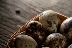 Quail eggs in a box on a vintage wooden background, top view, selective focus. Spotted quail eggs arranged in rows in a box on a vintage wooden background, top Royalty Free Stock Photography