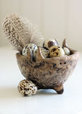 Spotted Eggs. Spotted quail eggs and speckled feather in a small ceramic hand-made bowl stock photo