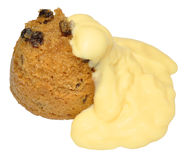 Spotted Sponge Pudding Royalty Free Stock Image