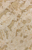 Spotted stone texture Royalty Free Stock Photos