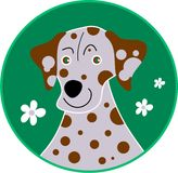 Spotty dalmation Royalty Free Stock Image