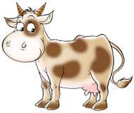 Spotty koe Royalty-vrije Stock Foto