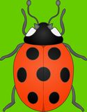 Spotty Lady bug Stock Image