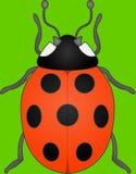 Spotty Lady bug. Vector illustration Stock Image