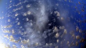 Spotty luscious clouds wide angle top. The Spotty luscious clouds wide angle top royalty free stock images