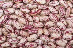 Spotty white-red haricot beans Stock Photo