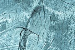 Spotty wooden texture with cracks of monochrome blue tone Royalty Free Stock Photos