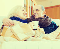 Spouses under blanket drinking tea Royalty Free Stock Photography
