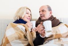 Spouses under blanket drinking tea Stock Photos
