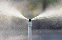 spout opryskiwania woda Zdjęcie Stock
