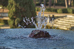 Spout of water. Water spurt from a fountain in the park stock photos