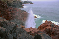 Spouting Cave, Iona, Scotland Stock Image