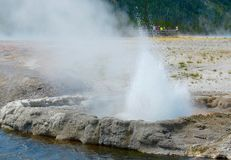 Spouting Geyser Letting Off Steam At Yellowstone National Park royalty free stock photography