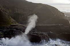 Spouting Horn Cape Perpetua Oregon Coast Royalty Free Stock Image