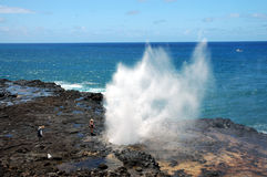 Spouting Horn, Kauai, Hawaii. Water forced into lava tube by surf, gushes into air. The ancient Hawaiians believed that Kaikapu, a lizard goddess, was trapped Royalty Free Stock Image