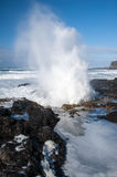 Spouting wave Royalty Free Stock Photo