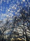 Spräckliga moln mot Carolina den blåa himlen Arkivbild