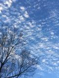 Spräckliga moln mot Carolina den blåa himlen Royaltyfri Fotografi