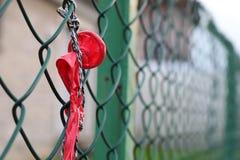 Sprängd ballong som hänger på grönt trådingrepp Fotografering för Bildbyråer