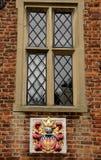 spröjsat fönster Arkivfoto