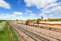 Sprüharm eines Traktors auf einem bebauten Feld Stockfoto