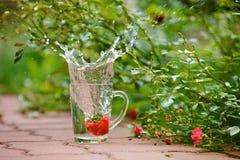 Sprühen Sie sauberes Trinkwasser von den transparenten Kreisen auf einem backgro Stockfotografie