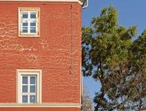 Sprünge auf dem Gebäude stockbilder