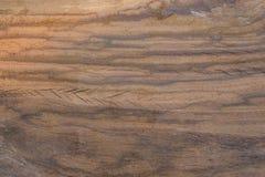 Sprünge des Holzes Stockbilder