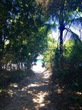 Sprünge Mendes-Strand in Ilha groß lizenzfreies stockbild