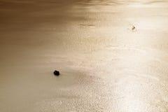 Sprünge und Loch im Eis auf Teich, im dunklen Eis im Loch und im Stein herum lizenzfreies stockfoto
