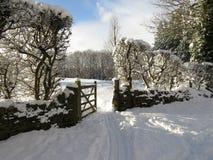 Spår för golfspårvagn till och med snön Arkivfoto