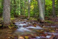 Sprague Creek. Cascading Water Of Sprague Creek, Glacier National Park, Montana Royalty Free Stock Images