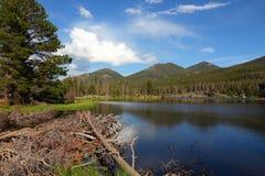 Sprague Lake Stock Afbeelding