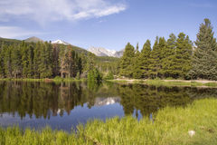Sprague Lake. In Rocky Mountain National Park Royalty Free Stock Photo
