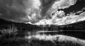 Sprague Lake Colorado Black and White Royalty Free Stock Images