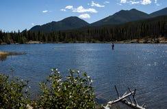 Sprague Lake i Rocky Mountain National Park 2014 arkivfoton