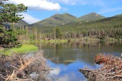 Sprague Lake Royalty Free Stock Photo
