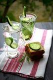 Sprankelend gebotteld water met komkommer en dille royalty-vrije stock fotografie
