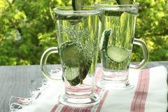 Sprankelend gebotteld water met komkommerdille royalty-vrije stock afbeelding