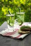 Sprankelend gebotteld water met komkommerdille royalty-vrije stock foto