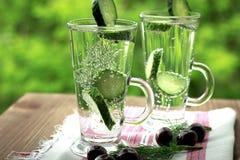 Sprankelend gebotteld water met komkommerdille en kers royalty-vrije stock fotografie