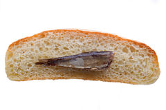 Sprat and bread Royalty Free Stock Photo