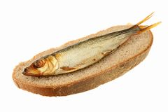Sprat of cold smoking Royalty Free Stock Photo