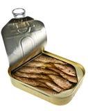 Sprat fish Royalty Free Stock Images