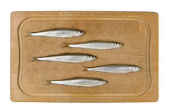 Sprat Fish Royalty Free Stock Image
